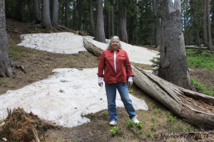 Barb in snow bank at 11,750 feet elev.