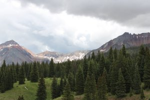a view of Lizard Head Pass, elev 12, 500'