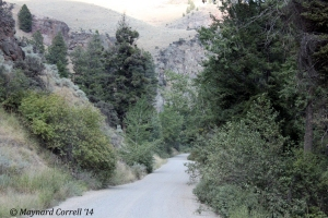 one of the mountain roads we took